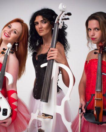 Electric and acoustic trio in Dubai