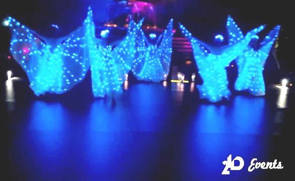 LED butterflies performance for gala dinners