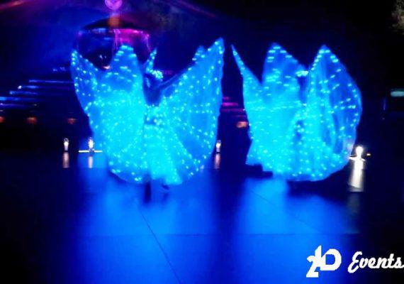 LED butterflies performance for corporate events
