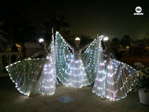 LED butterflies performance for private events
