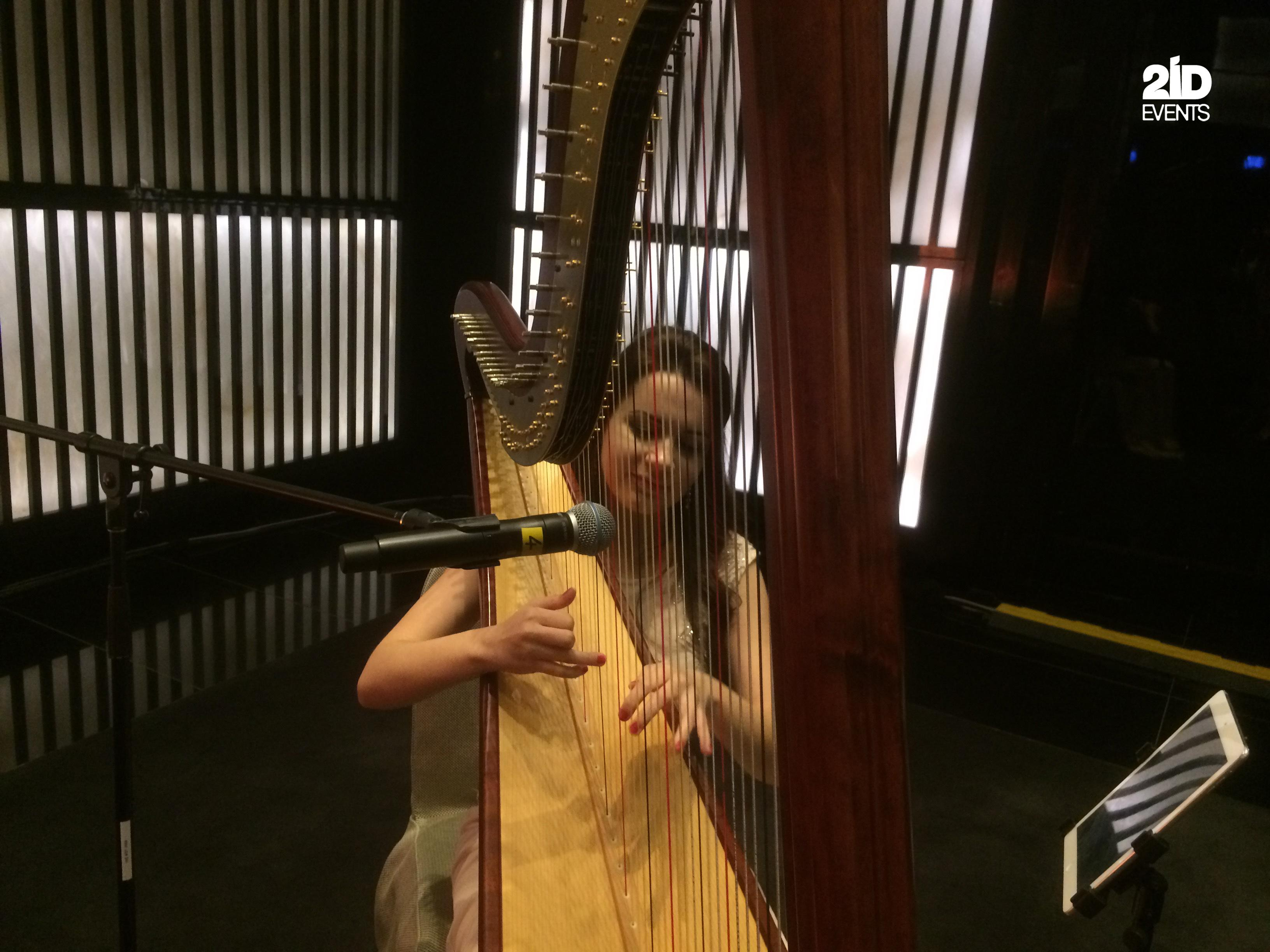 HARP PLAYER FOR CORPORATE EVENT