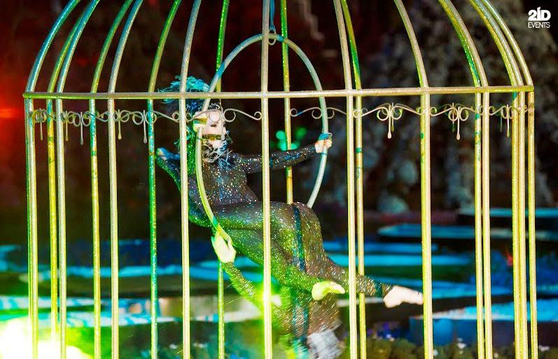 2ID - BIRDS IN A CAGE FOR THE GRAND OPENING OF THE MIRACLE GARDEN