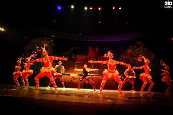 Circus Show in Dubai
